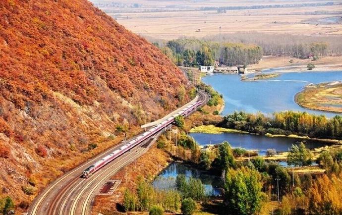 长白山金黄色的秋天唯美风景图片欣赏