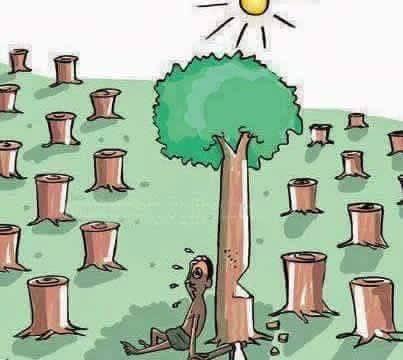欢乐逗图:一组见仁见智的漫画