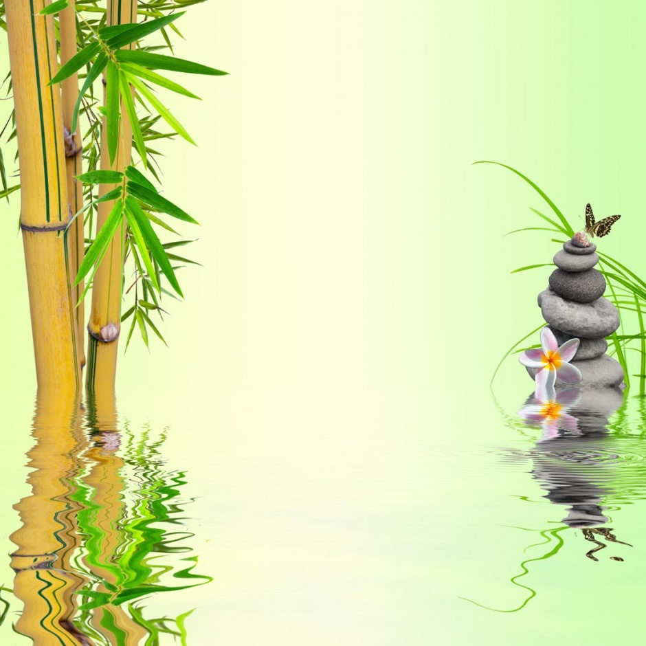 精选竹子唯美风景图片素材