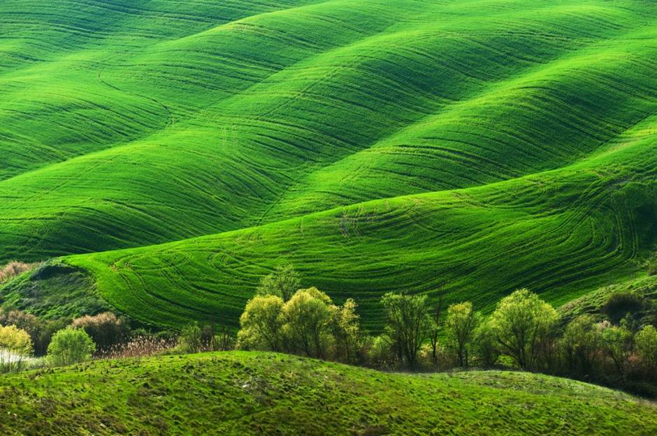 绿色护眼的山坡风景图片