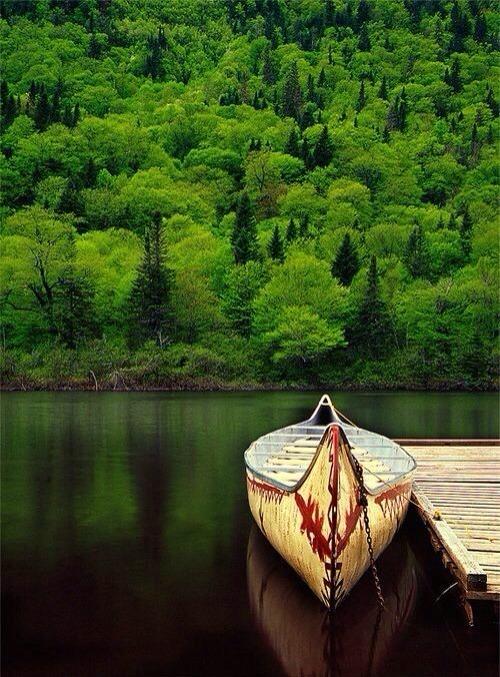 唯美小清新高清绿色风景图片