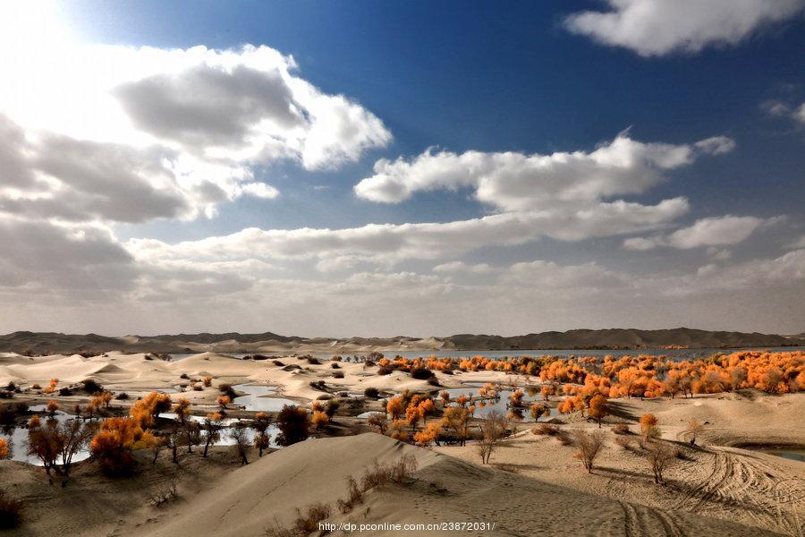 新疆塔里木盆地