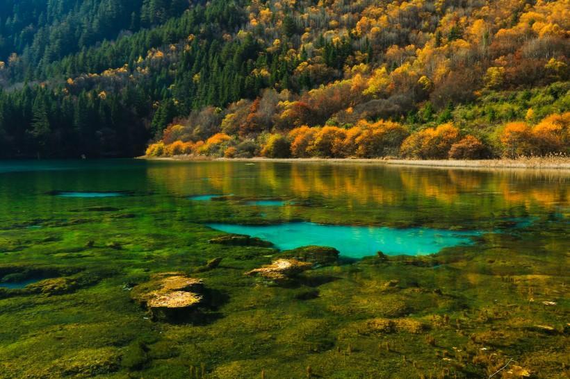 唯美的四川九寨沟风景图片
