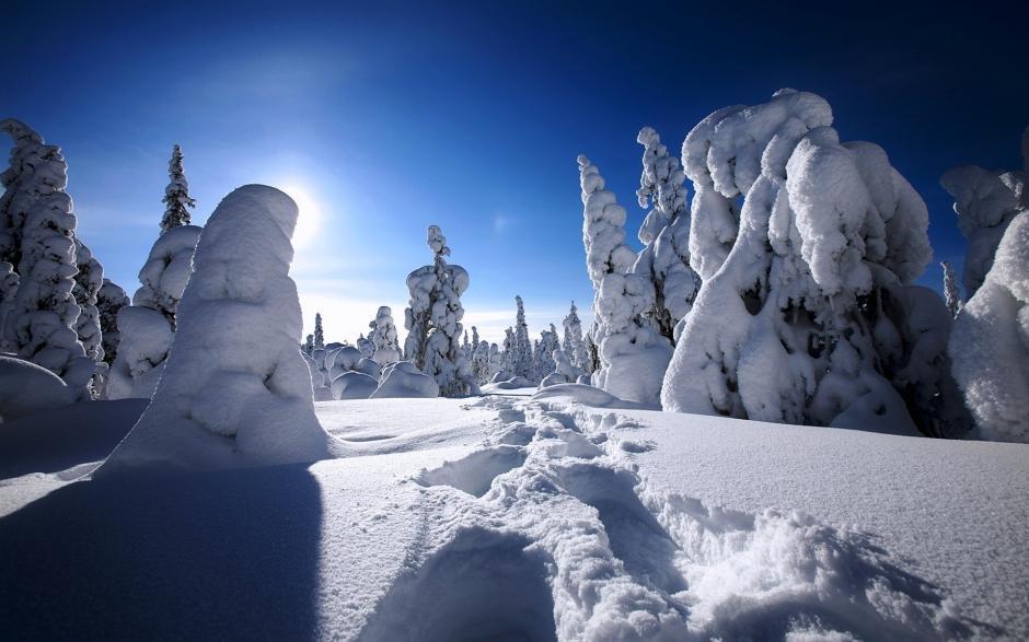 下雪夜景图片大全 冰天雪地冬天下雪的图片大全高清电脑桌面壁纸下载
