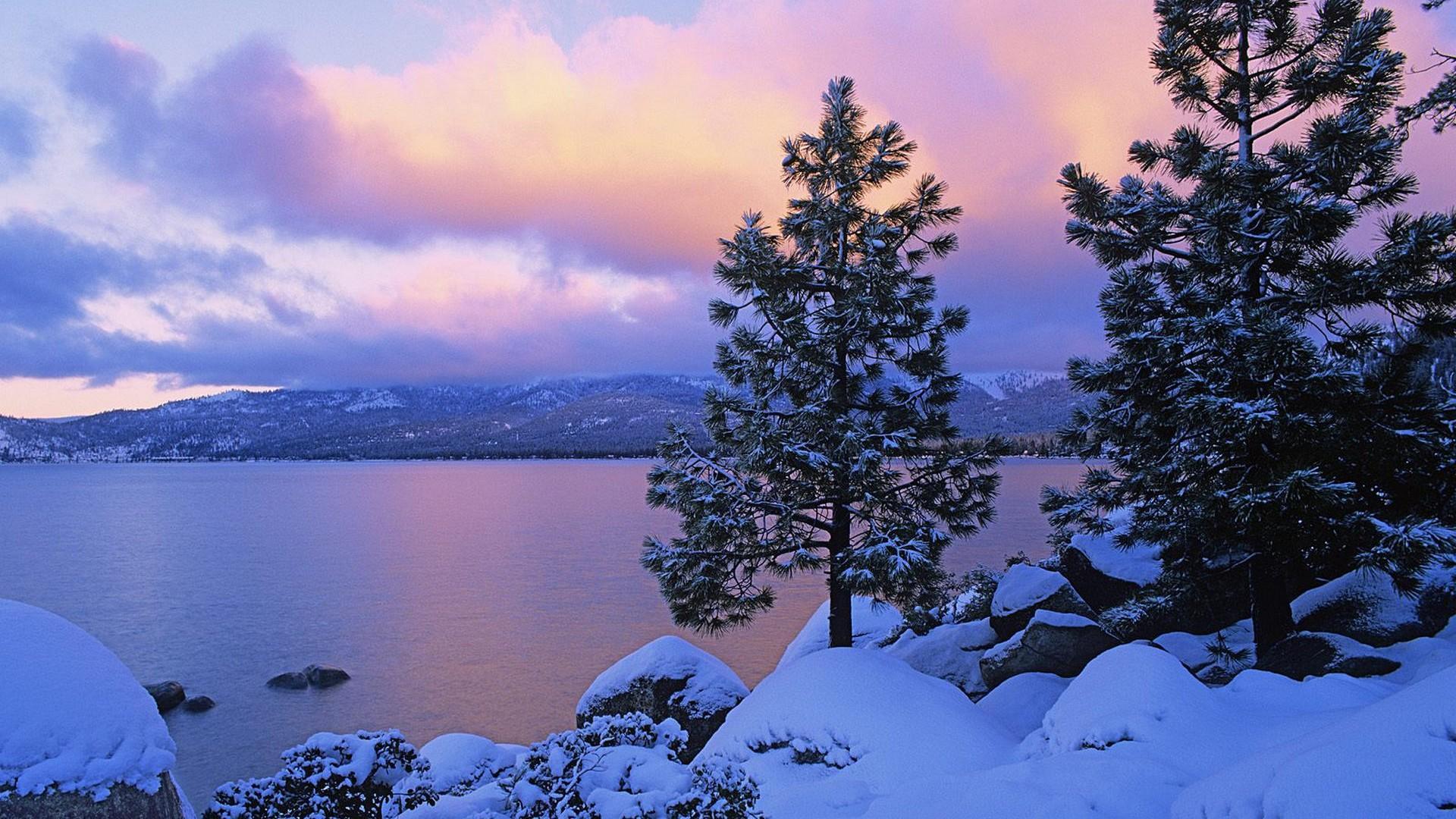 冬天雪景壁纸 日本京都冬天雪景竹林风景桌面壁纸