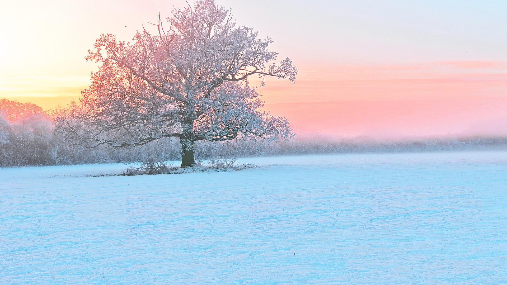 雪景壁纸 精选好看的自然风景冬天雪景高清电脑桌面壁纸下载5p