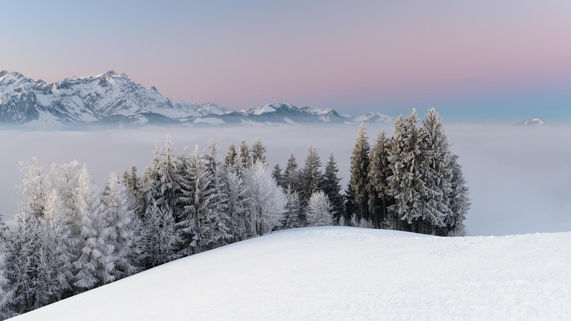 唯美雪景壁纸 冬季唯美高清雪景桌面壁纸