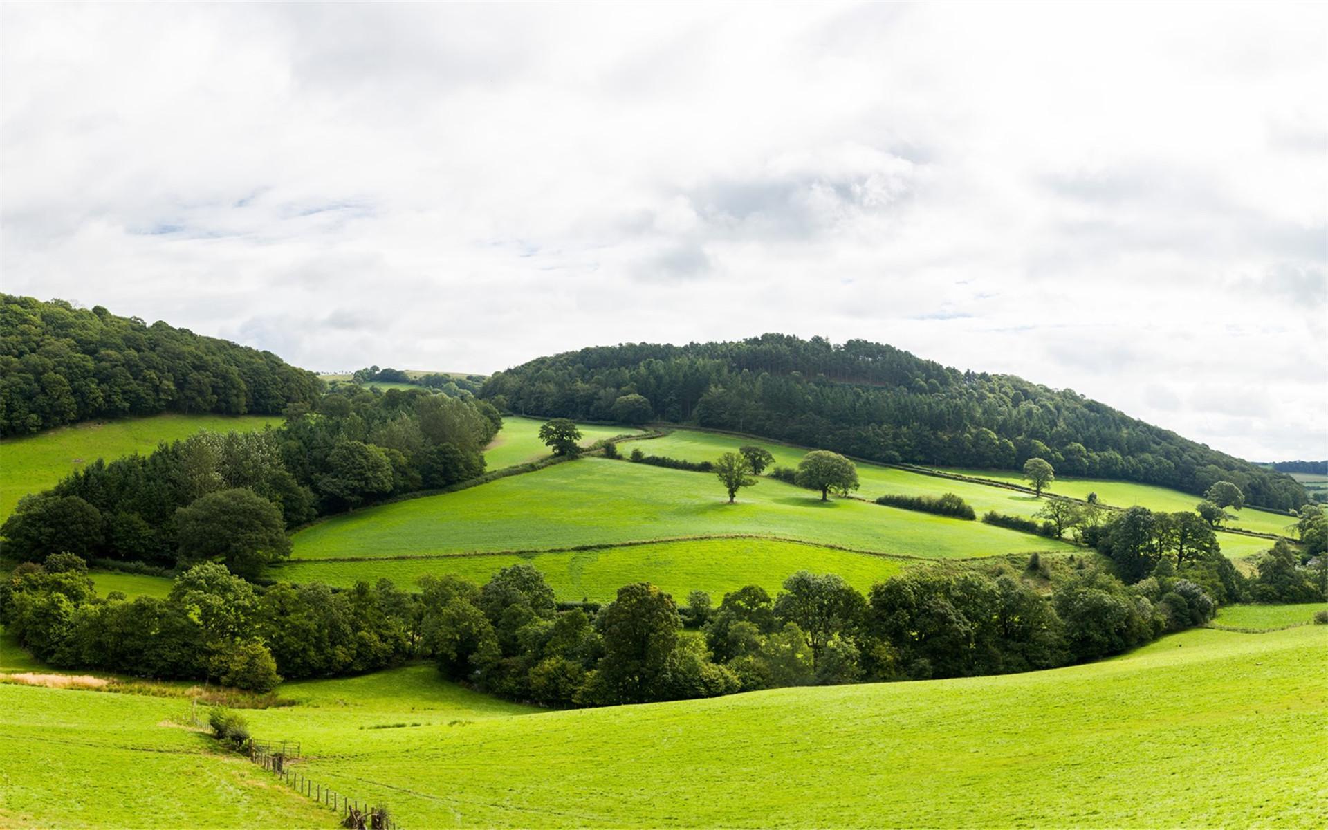 自然风景桌面壁纸护眼 精选清新护眼的大自然绿色高清