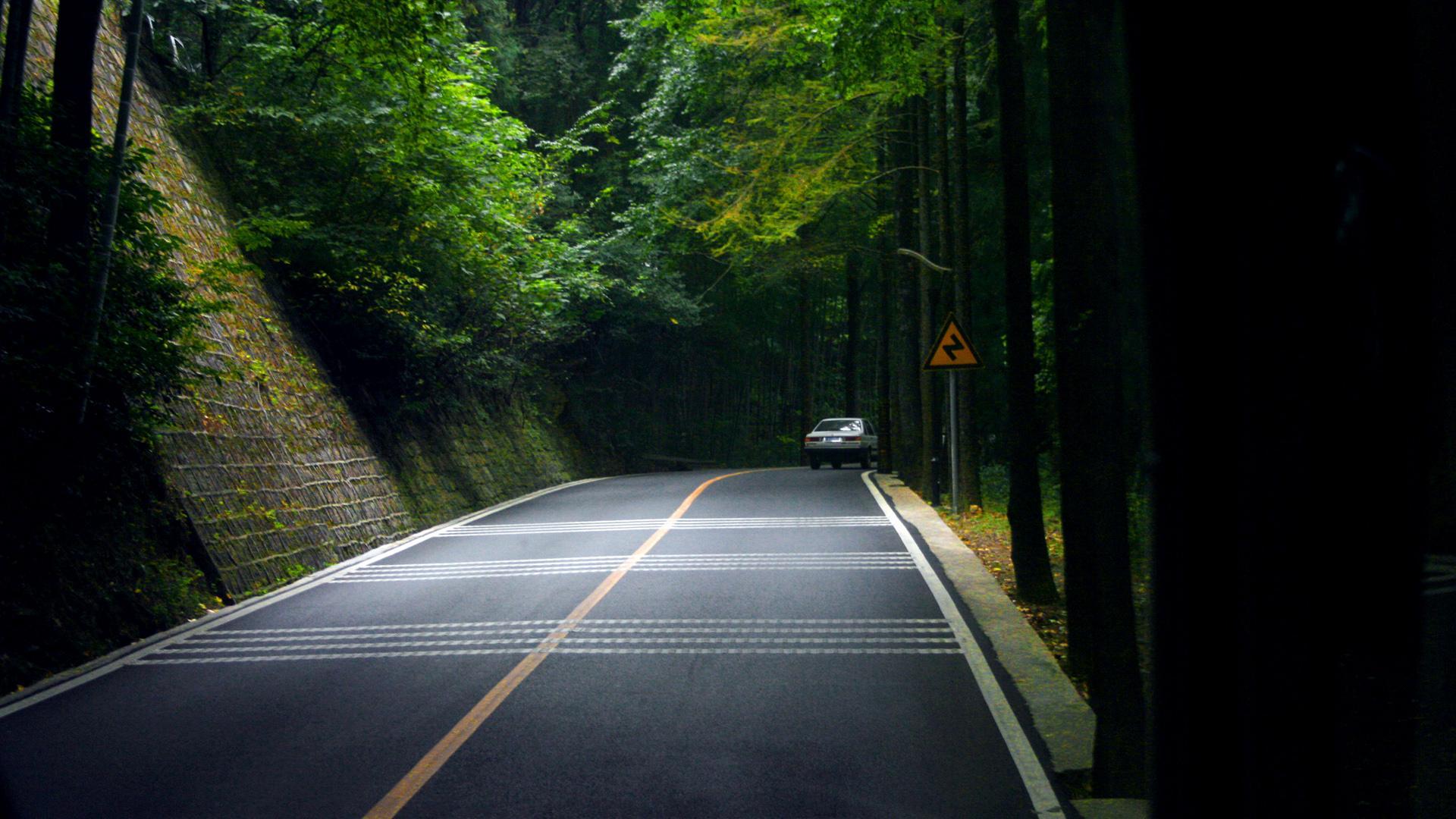 公路电脑壁纸高清壁纸 绿色森林公路风景桌面壁纸大全