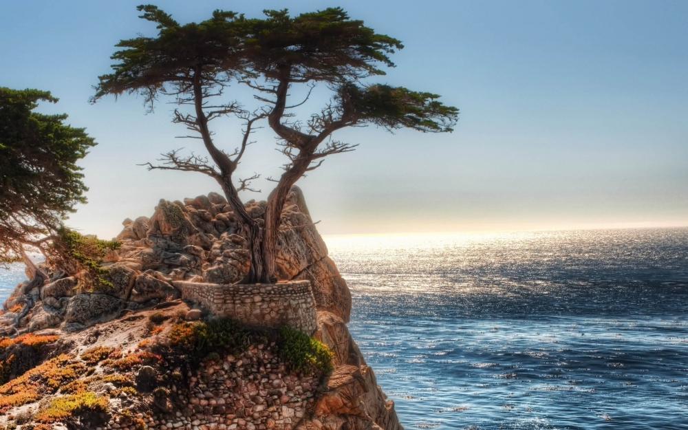 大自然原始之美清新风景图片壁纸 第二辑