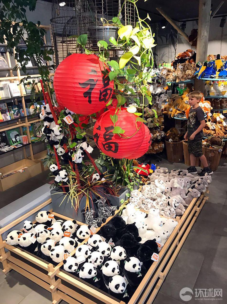 柏林动物园熊猫馆迎开馆 熊猫住处超豪华