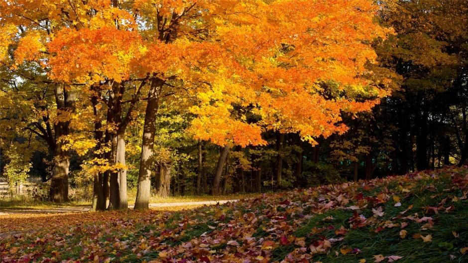 秋天山林优美风景图片鉴赏
