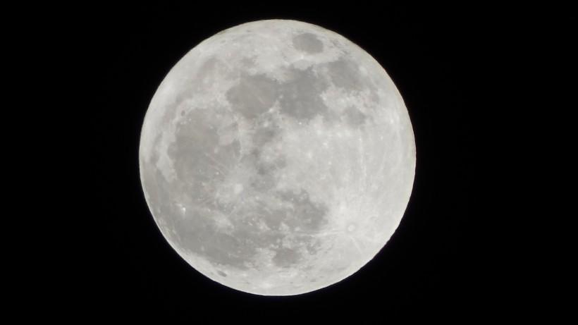 中秋圆圆的月亮图片