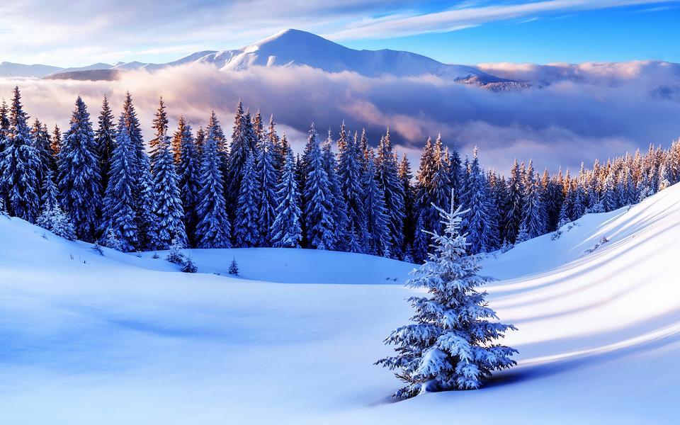冬季简约自然高清风景壁纸(www.5443.com 美女图片第1张)