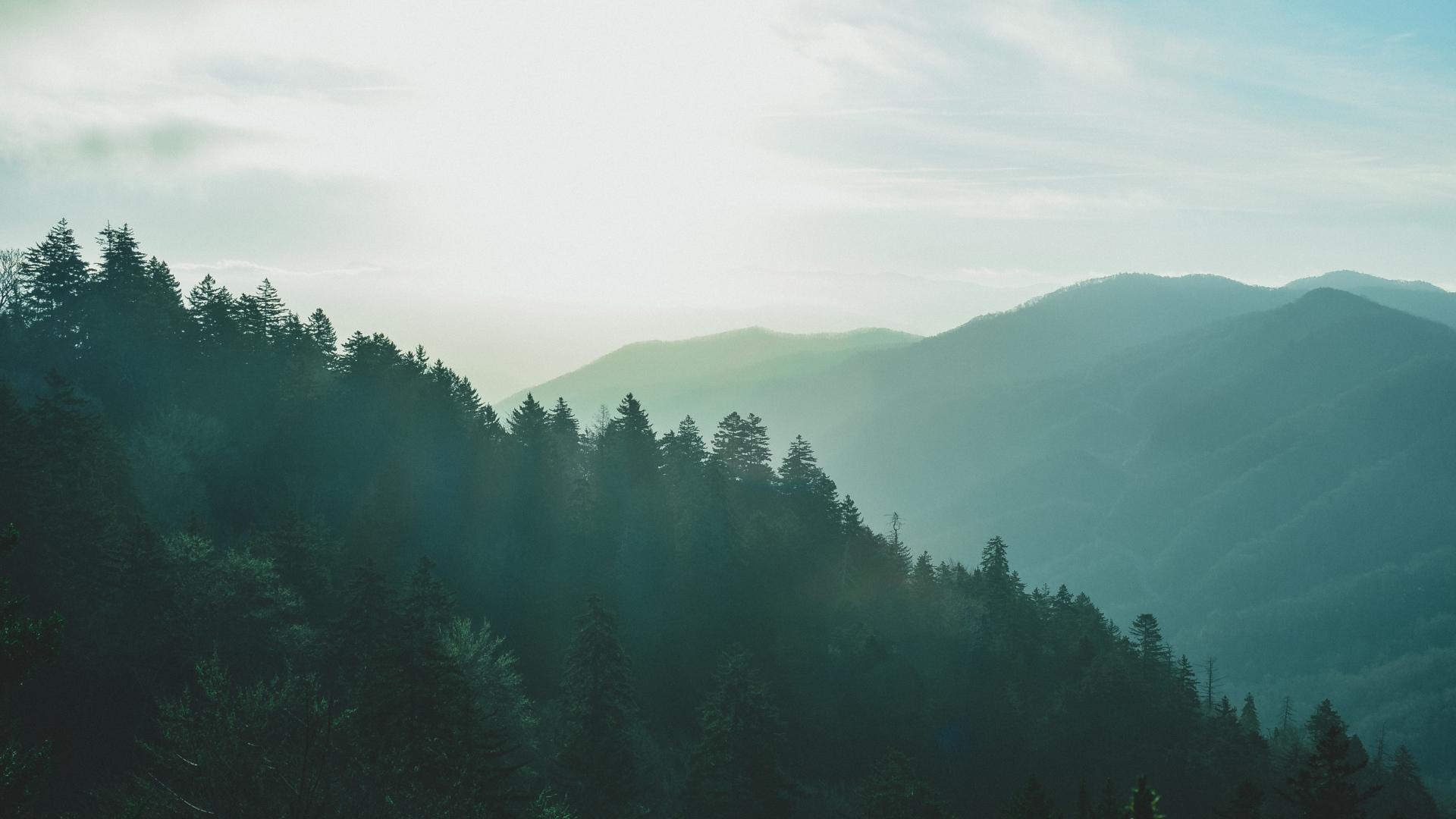 雾下朦胧的风景图片高清桌面壁纸