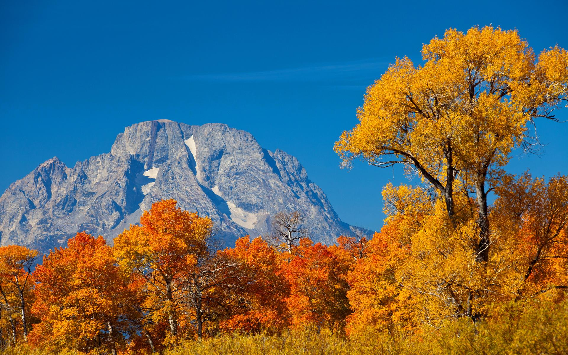 唯美秋季风景小清新高清桌面壁纸