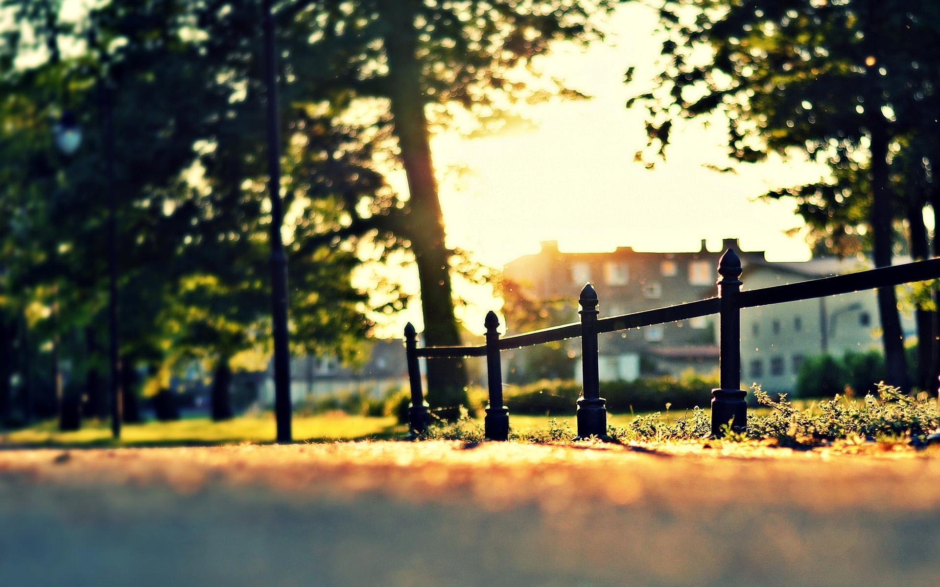 唯美阳光唯美风景桌面壁纸