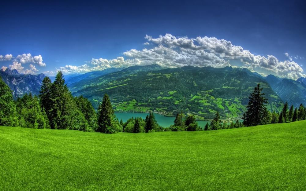 小清新绿色护眼美丽草原风光桌面壁纸