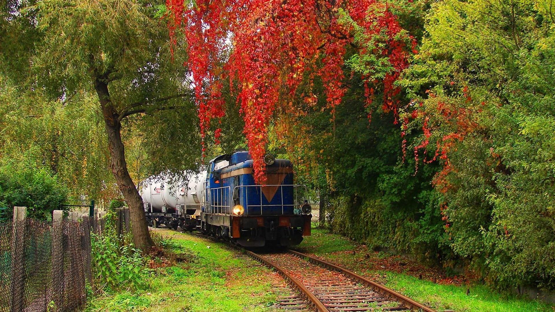 火车铁路沿线风景图片