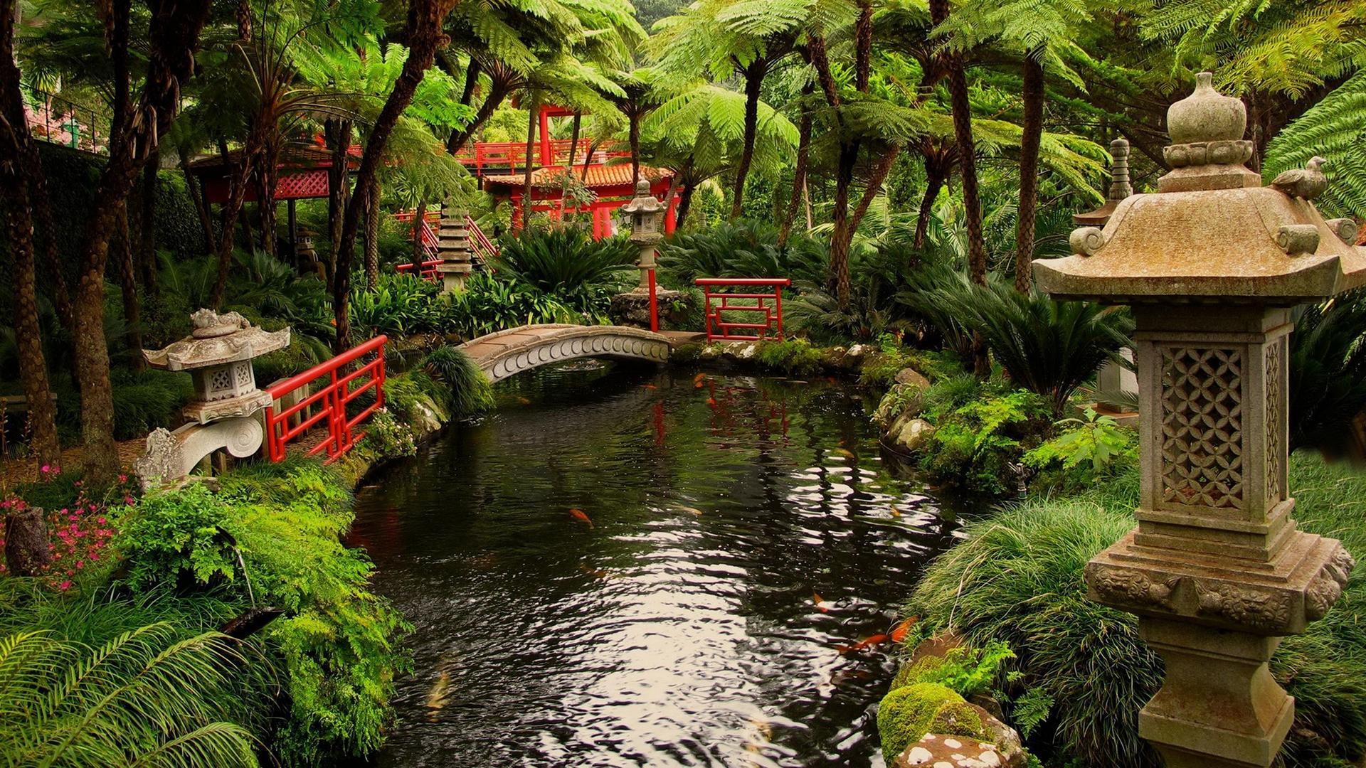 绿色花园风景图片高清宽屏桌面壁纸