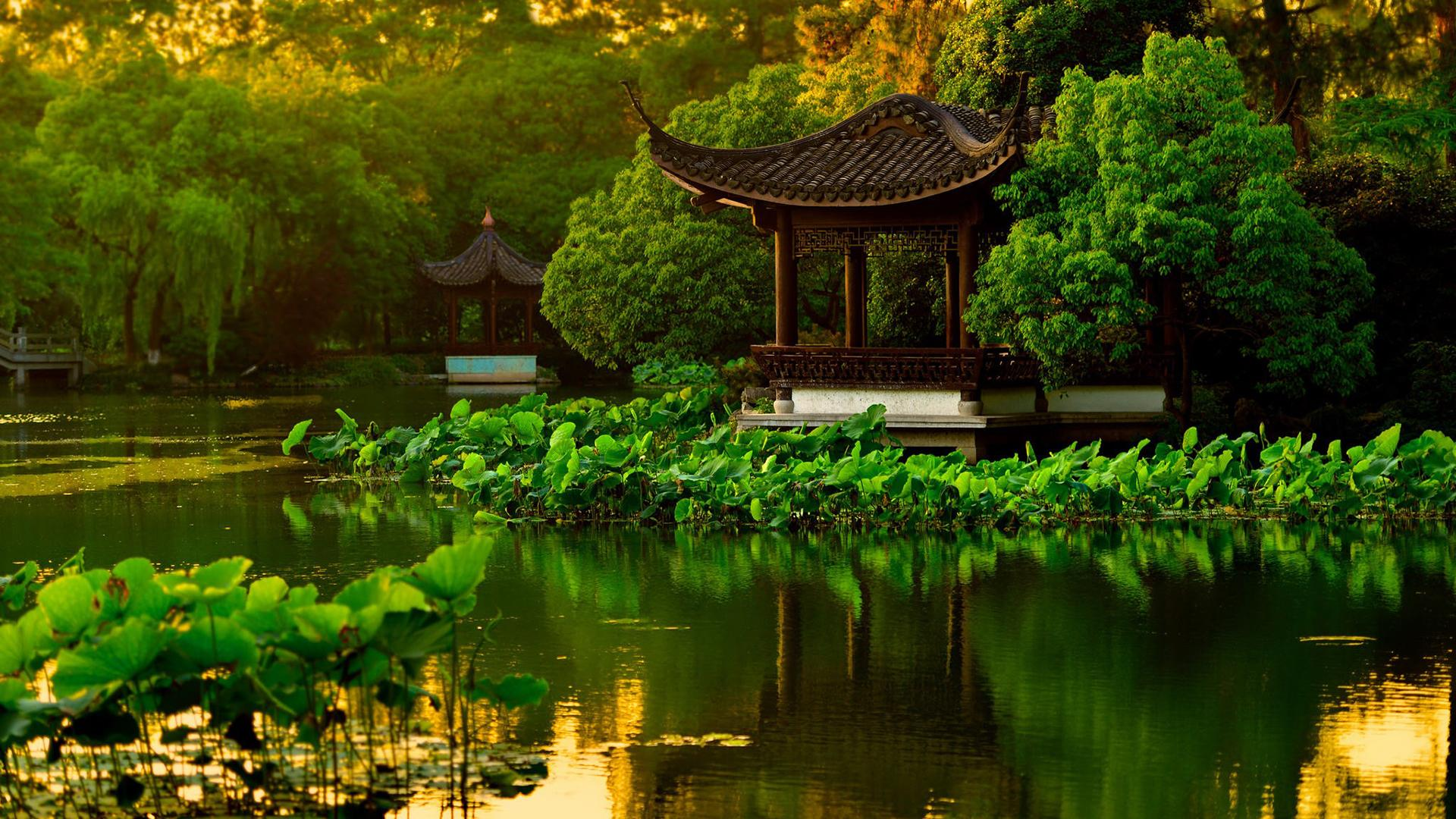 绿色花园风景图片高清宽屏桌面壁纸_图片新闻_东方头条
