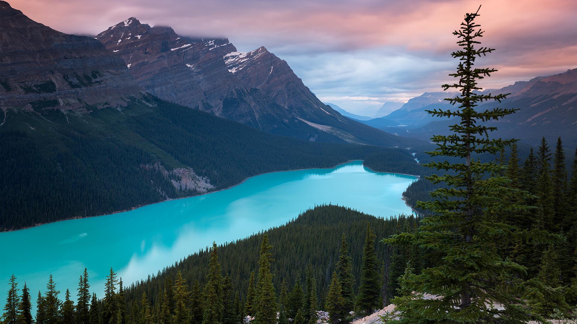 唯美绿色风景图片高清宽屏壁纸