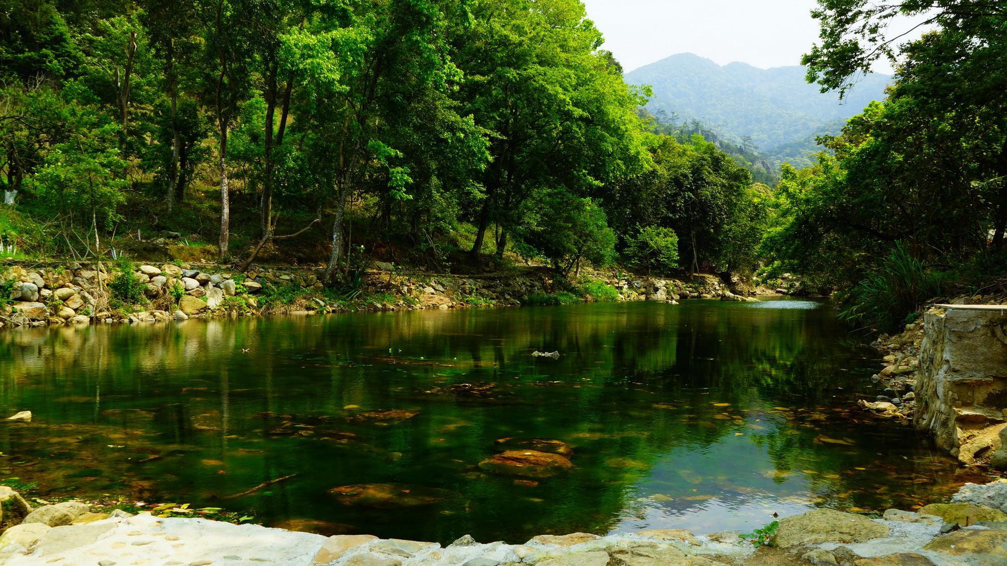 最美系列之森林公园风景图片
