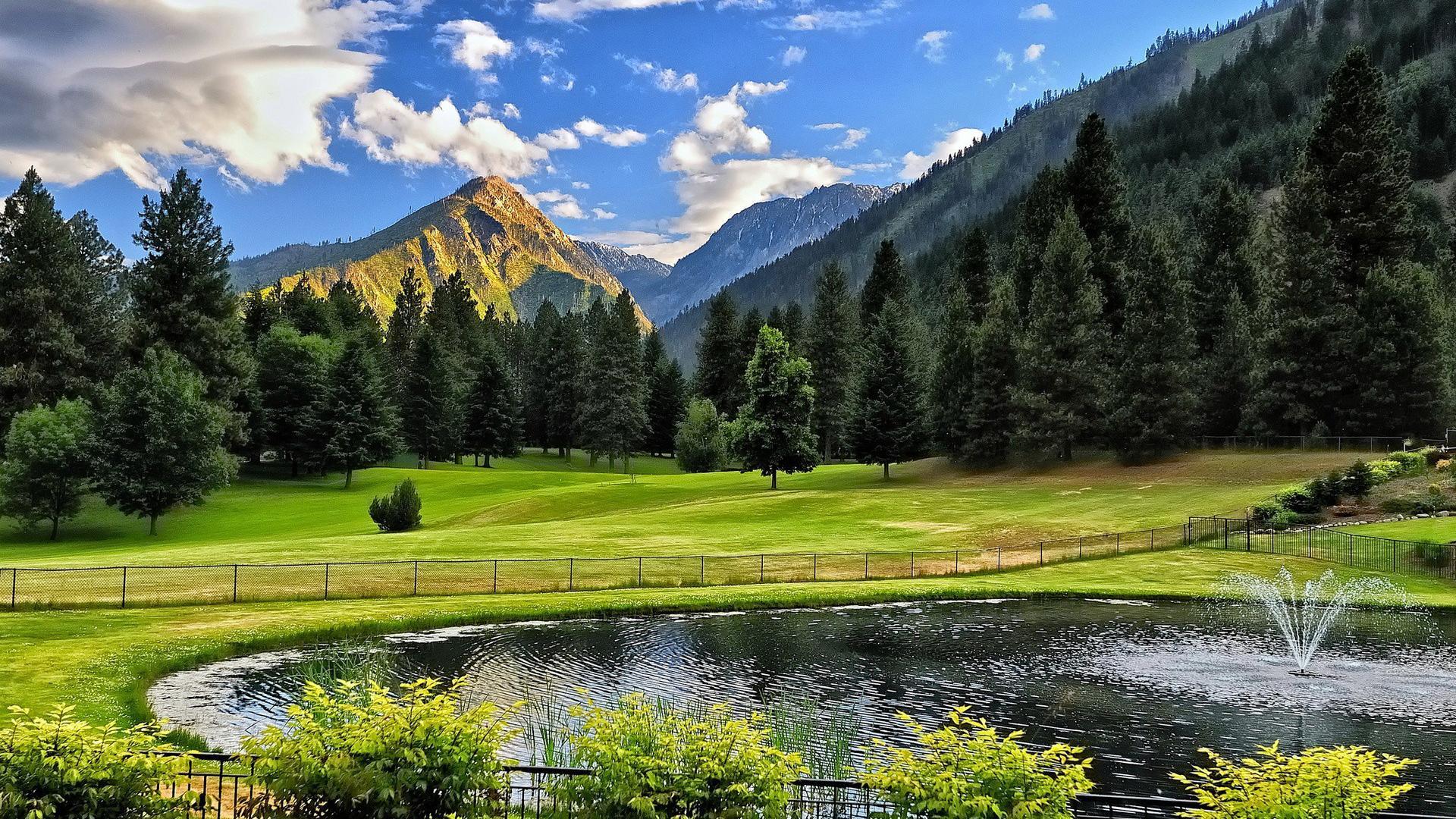 唯美清新的绿色公园风景图片高清壁纸