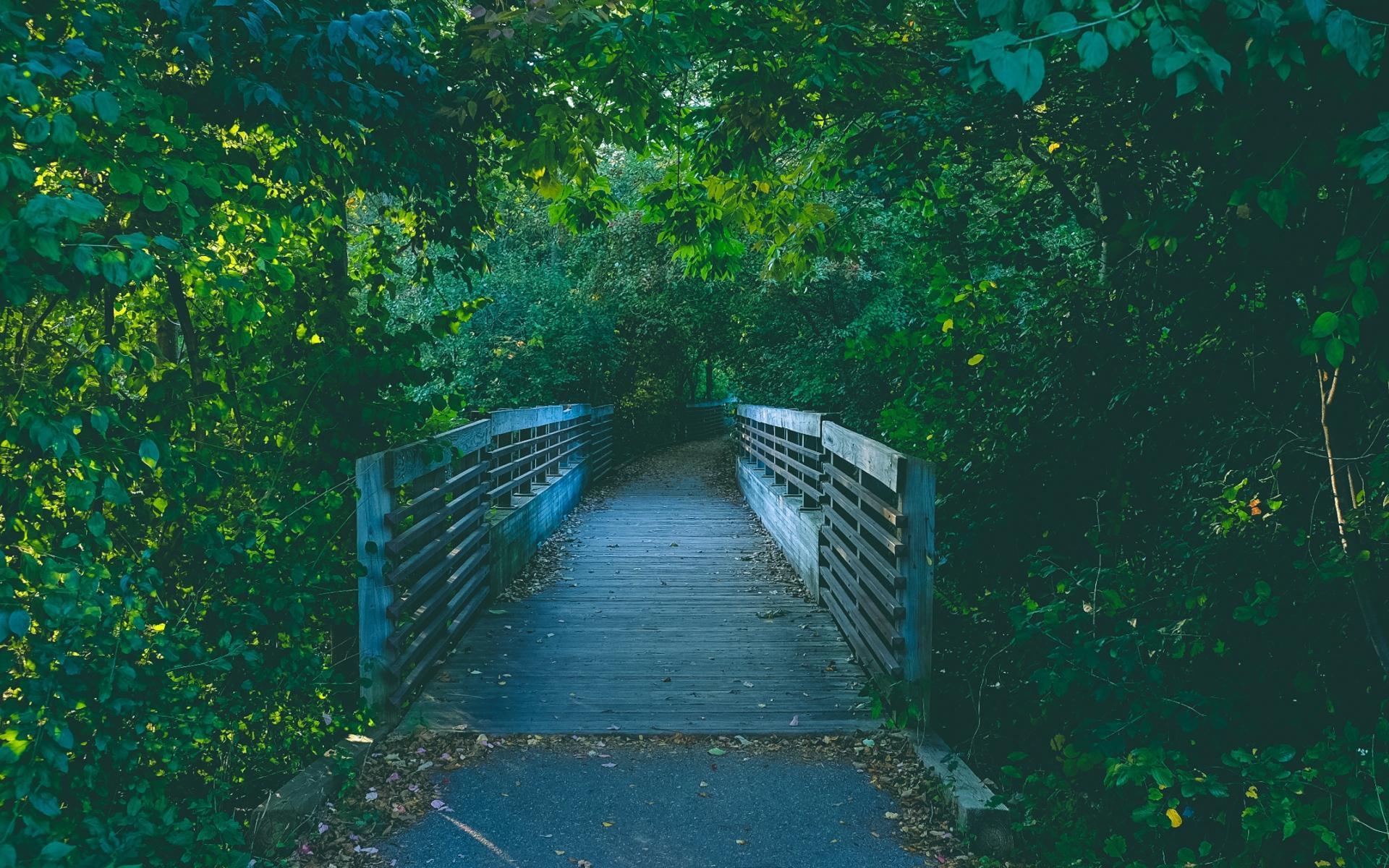 安静优美的小桥自然风景图片桌面壁纸