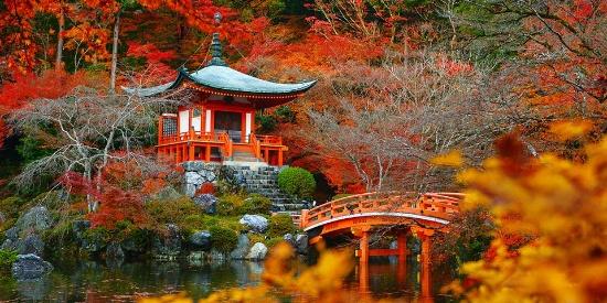 抓住最后一片秋 出境游10处最美赏秋地