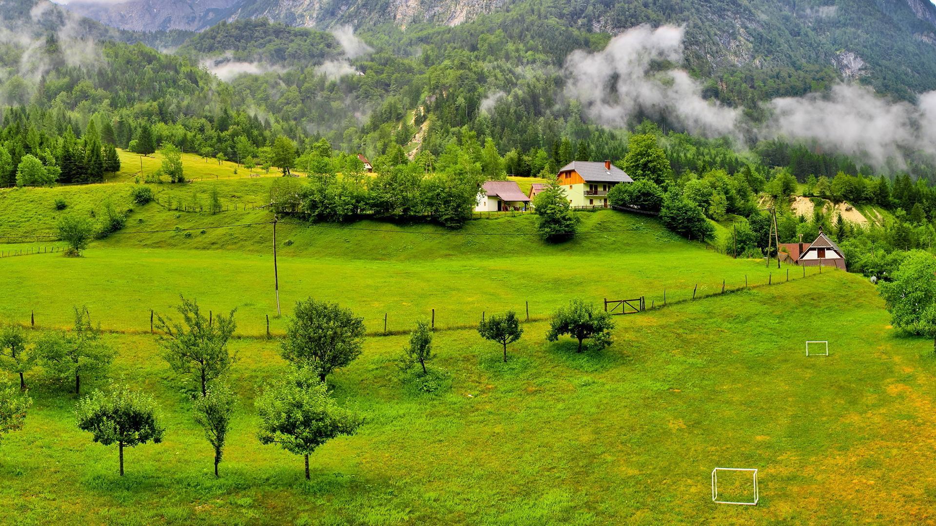 绿色护眼自然高清风景图片壁纸