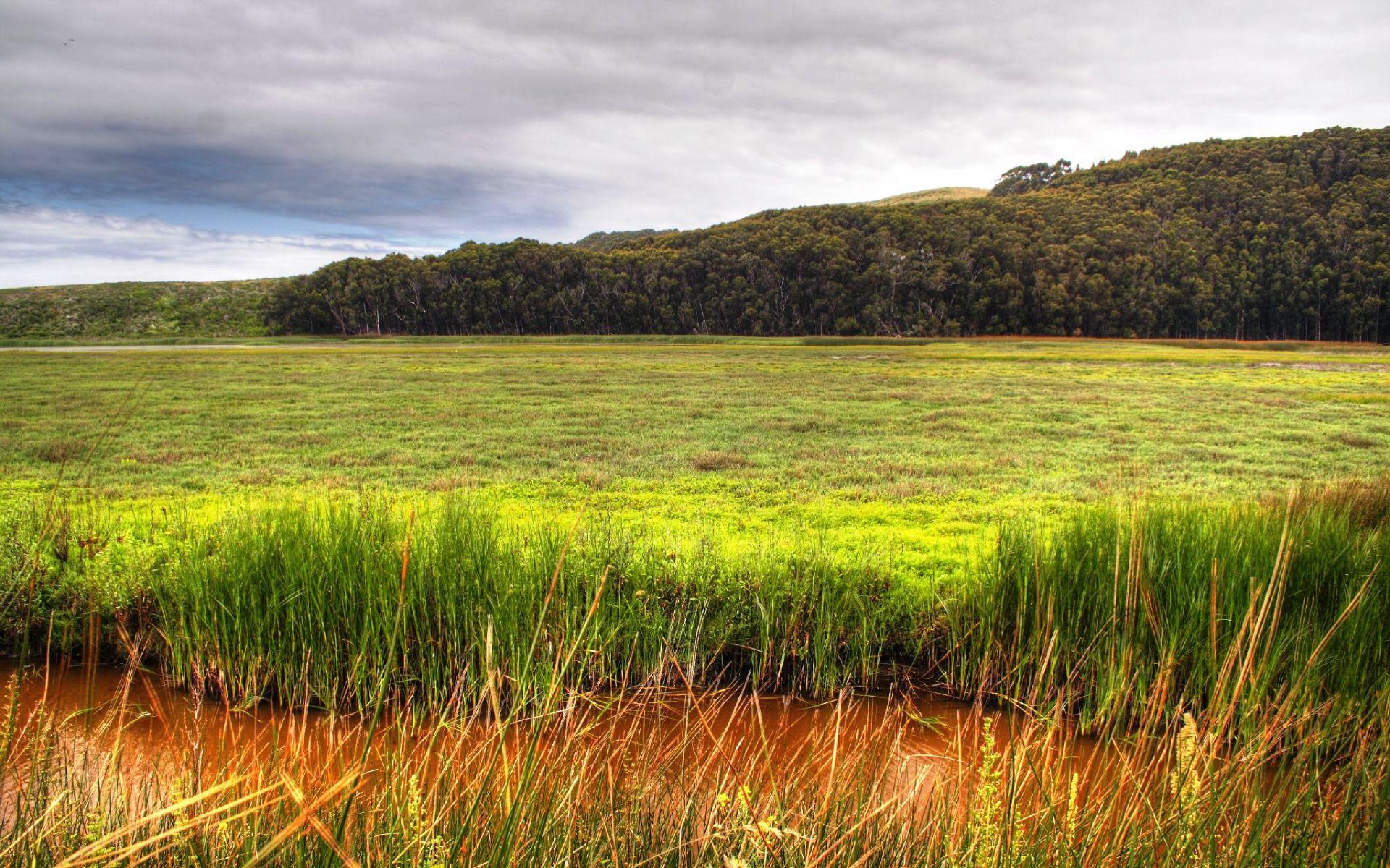 绿色高清大自然风景图片桌面壁纸