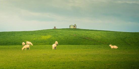 大自然清新唯美风景图片高清壁纸