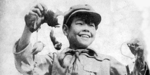 """珍贵老照片:五十年代全民""""除四害""""运动"""