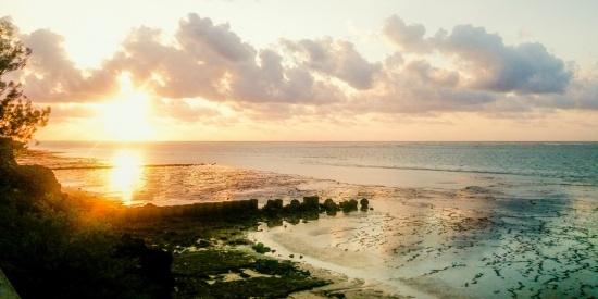 清晨的朝阳图片