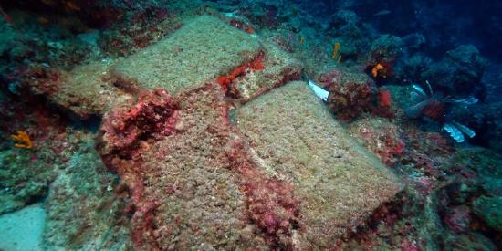土耳其海域发现3600年前沉船残骸
