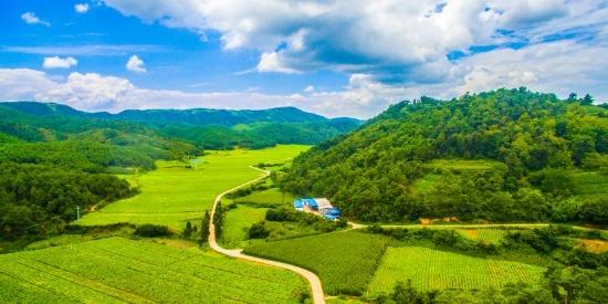 浙江台州航拍弥勒生态山谷风景图片