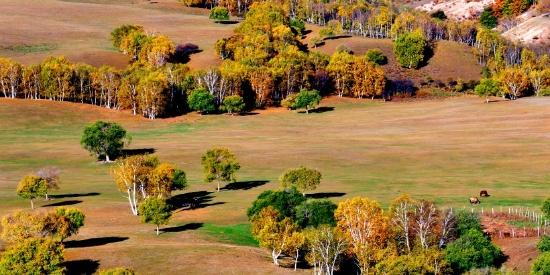 河北张家口坝上唯美秋景图片