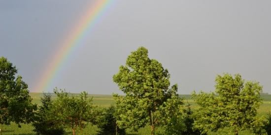 七色的彩虹图片