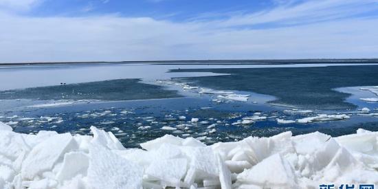 青海湖结束封冻期 春意盎然