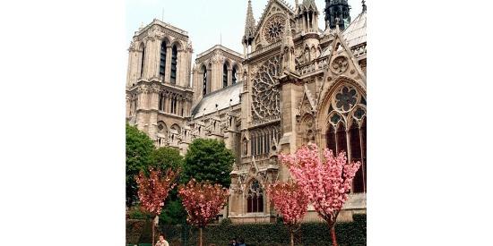 巴黎圣母院,记忆中的样子