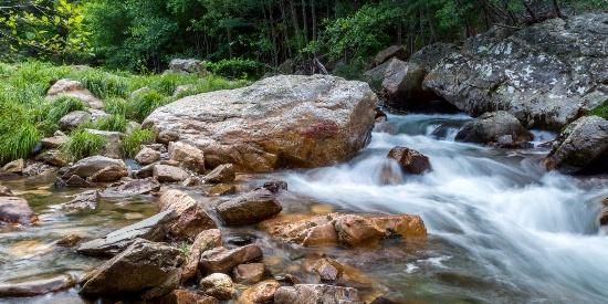 森林小溪山间美景图片桌面壁纸