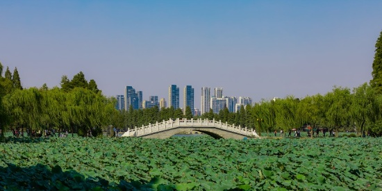 湖北武汉城市建筑风景图片