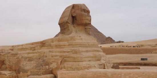 古埃及人面狮身像图片