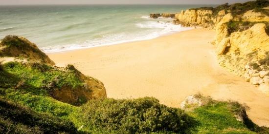 细软的海滩图片