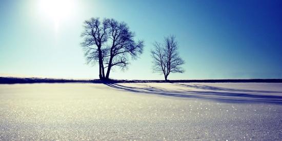 冬季森林雪景桌面壁纸