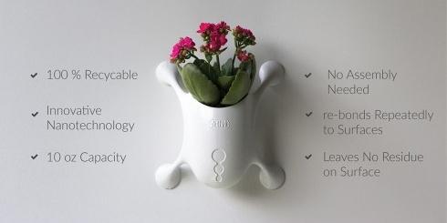 可吸附在玻璃上的小盆栽,既能亲近自然又能节省空间_图片之家