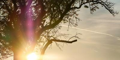 唯美的日出风景图片