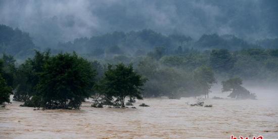 暴雨致福建武夷山河水暴涨 景区全面闭园