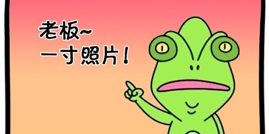 搞笑漫画:变色龙与大公鸡照相